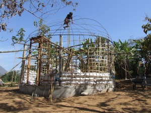 Building the Bird Cage.