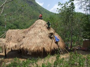 Forming a chain to get the thatch up to the top of the roof.