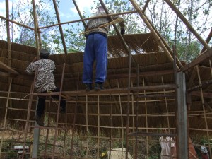 Attaching the thatch to the bamboo roof structure.