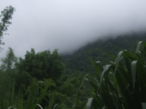 Mount Chiang Dao disappears completely in a rain cloud.